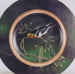 sn-blackburnian-warbler-191412-sm-c.jpg