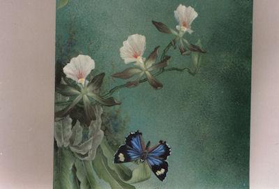 sn-genovea-azure-butterfly-1914002.jpg